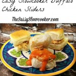 easy-slowcooker-check-sliders
