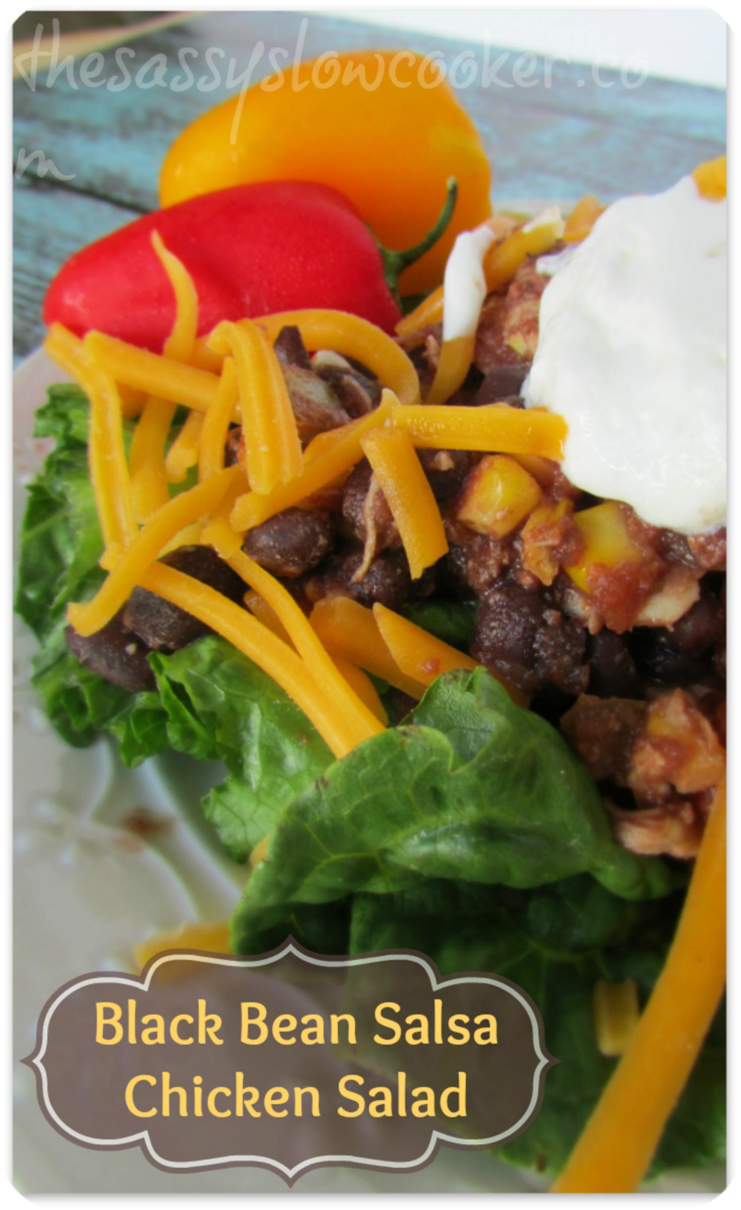 Salsa Chicken Slow Cooker Salad